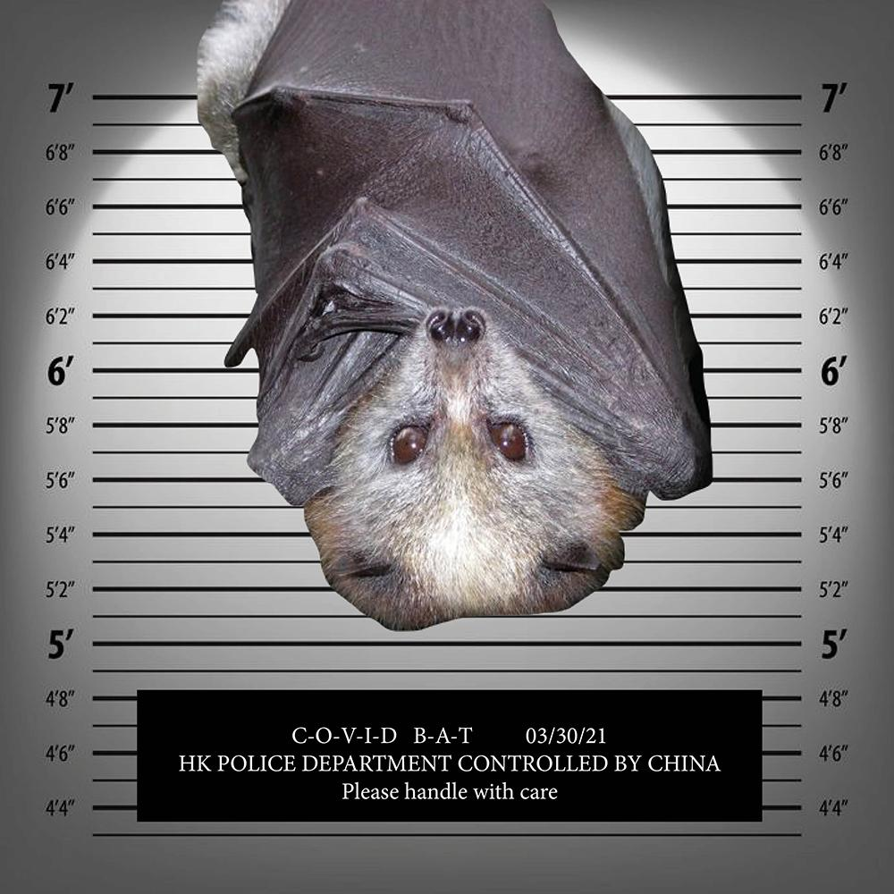 Covid Bat to go on trial next week, prosecutors confirm