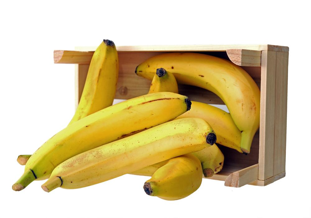 Banana lovers bewildered as their favourite fruit turns up in cocaine boxes
